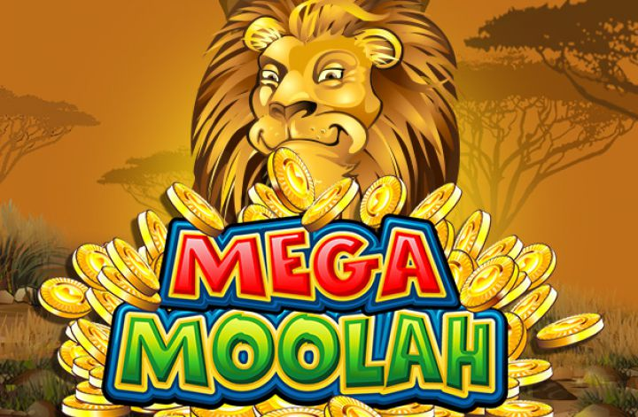 Mega Moolah Casino Game